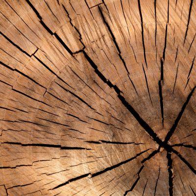 background-brown-circle-cut-40973.jpeg